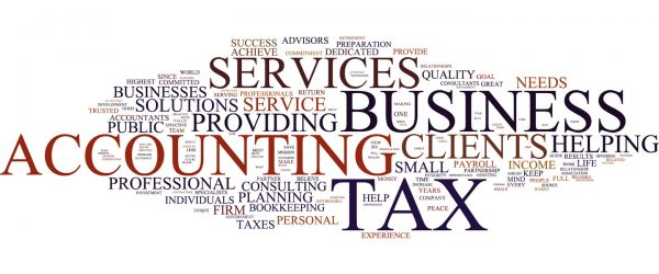 How Certified Tax and Accountancy Specialists Work for your Firm?